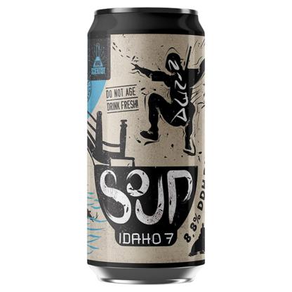 Ninja Soup Idaho 7